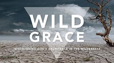 scc050-wildgrace